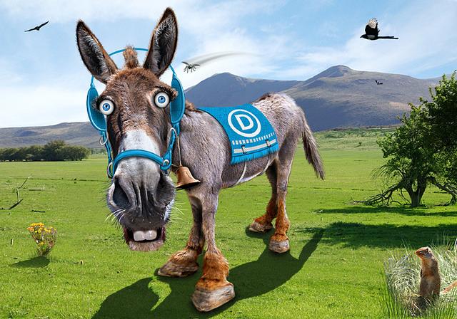 Democrats (2)